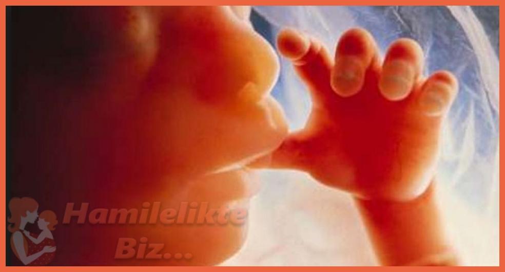 Doğmamış Bebekte Genetik Analizi Nasıl Yapılır?