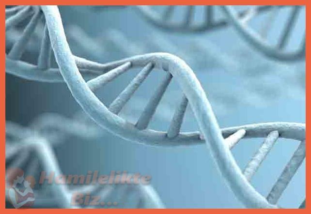 Gebelik Öncesi Genetik Tanı Nasıl Konur?