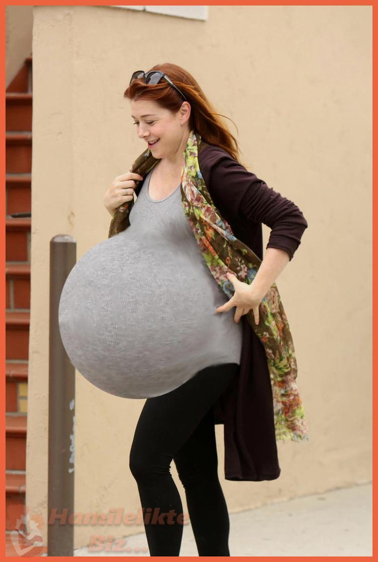 Hamilelik Nedir