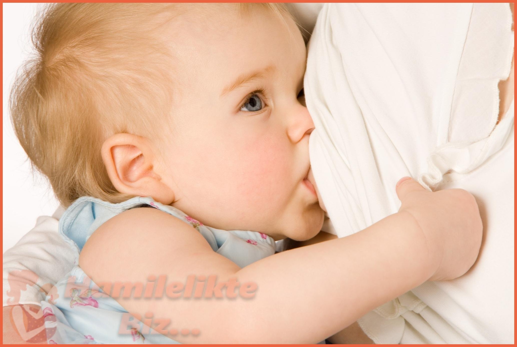 Anne Sütü ve Önemi