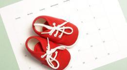 Hamilelik Hesaplama